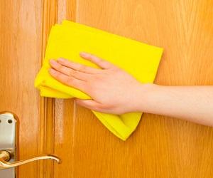 Правильный уход за шпонированными дверями